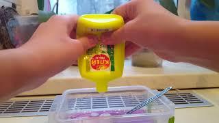 DIY:лизун из клея пва и пены для бритья!Он получился!Шампунь и вода.Лизун получился?