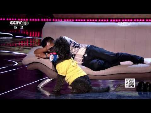 20140831 我要上春晚 台湾选手创意光影 姐妹花竞技舞蹈