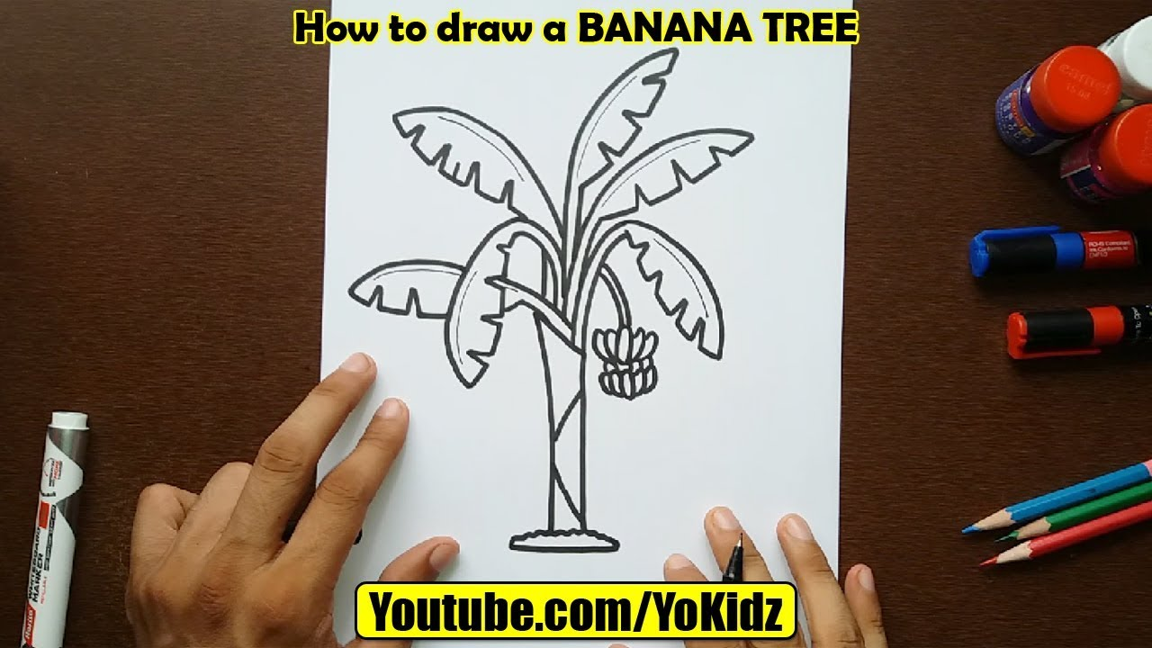 Banana Tree Art Pictures