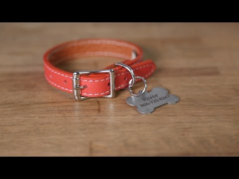 How To Attach A Hanging ID Tag Onto A Dog Collar