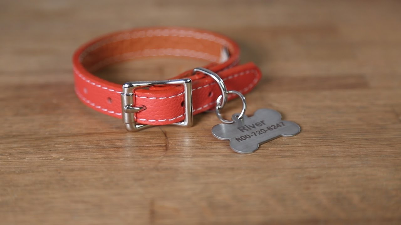 How To Attach A Hanging ID Tag Onto A Dog Collar - YouTube