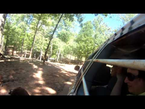 Wild Animal Safari - North of Callaway Gardens