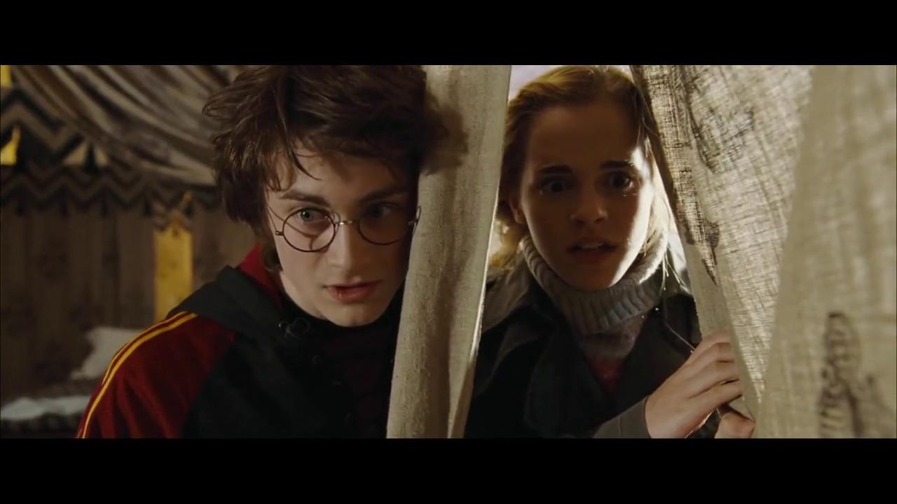 Harry & Hermione H...