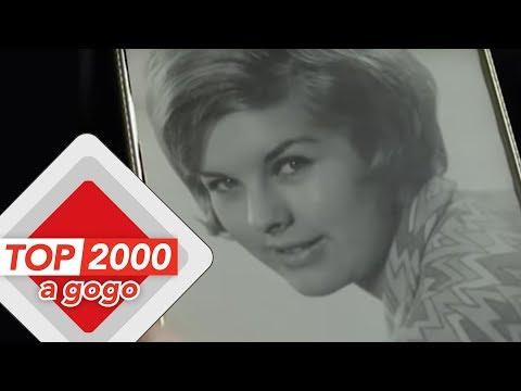 The Cats – Lea | Het verhaal achter het nummer | Top 2000 a gogo