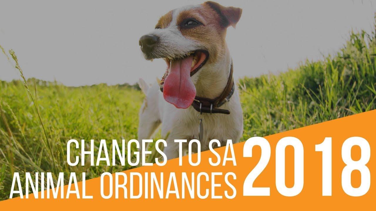 Ordinances (Laws)