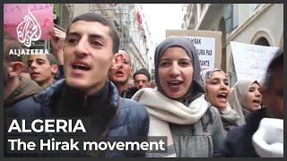 Algerians vote in parliamentary elections amid boycott calls