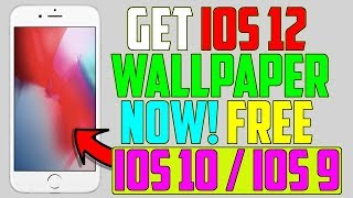 How To Get NEW iOS 12 Wallpaper NOW!! FREE on iPhone, iPad & iPod
