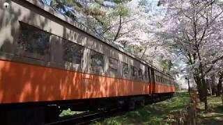 【4k】2019/4/28(Sun) 津軽鉄道 旧型客車 芦野公園 桜