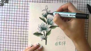Copic &  Promarker Card Tutorial