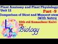 Difference between Dicot and Monocot Stem, Unit12, 10std, Biology, Plant Anatomy,Samacheer Kalvi TN