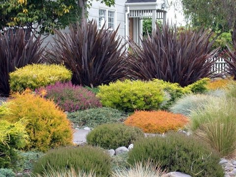 Ornamental grasses Design For Your Garden - YouTube - grass garden design