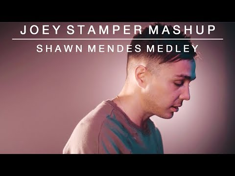 Shawn Mendes Medley (There's Nothing Holdin' Me Back // Mercy) | Joey Stamper