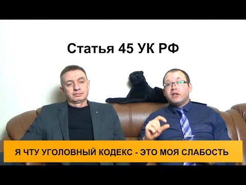 Статья 45 УК РФ. Основные и дополнительные виды наказаний