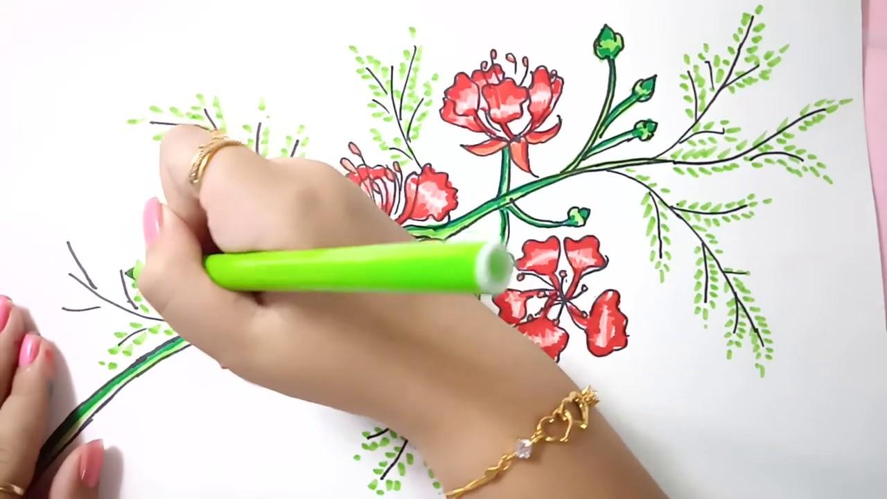 Cách vẽ hoa phượng _ How to draw phoenix flowers