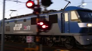 2019/12/03 JR貨物 大谷川踏切から遅れ含む朝の貨物列車6本 ネタ3本アリ