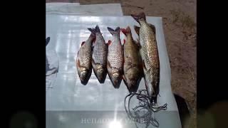 Женская рыбалка слайд шоу. У нас клюет всегда!