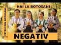 Fetele din Botoșani - Hai la Botoșani (NEGATIV)