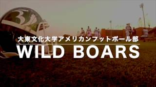 WILD BOARS 2017 新入生歓迎Promotion Video