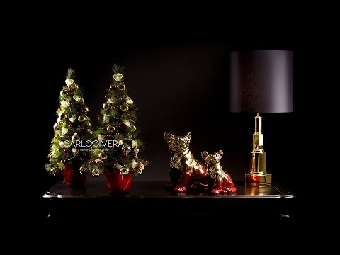 Carlo Civera - Christmas Gala 2016