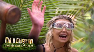 Toff and Stanley Johnson Get Hammered For Dingo Dollars! | I'm A Celebrity...Get Me Out Of Here!