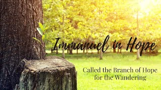 Immanuel in Hope - Called the Branch of Hope for Wandering