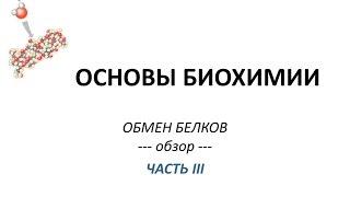ОБМЕН БЕЛКОВ - часть 3 - Просто о сложном - Химия