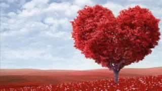 ზღაპარი სიყვარულისა
