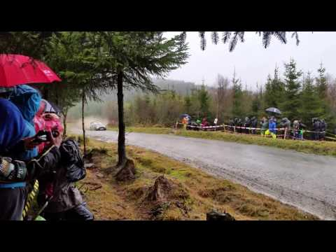 WRC Wales Rally GB Dyfnant 2015