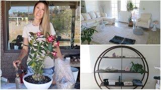 Home + Decor Vlog
