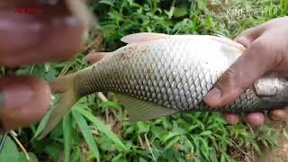 Câu Cá Giải Trí Cuối Tuần • Cá Cắn Câu Liên Tục • Ngọc Biển Fishing