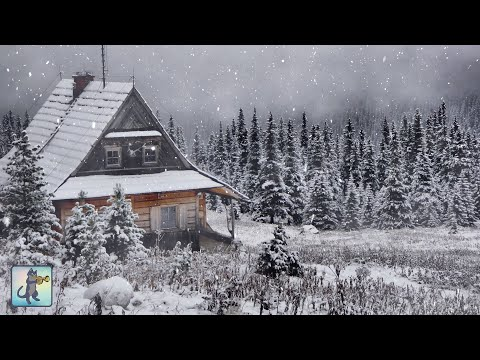 3 HOURS Of Relaxing Snowfall: Beautiful Falling Heavy Snow - The Best Relax Music 1080p HD #3
