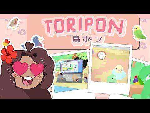 Pokémon Snap for Birds?! 🐦💕 Toripon! 鳥ポン • #1 Mp3