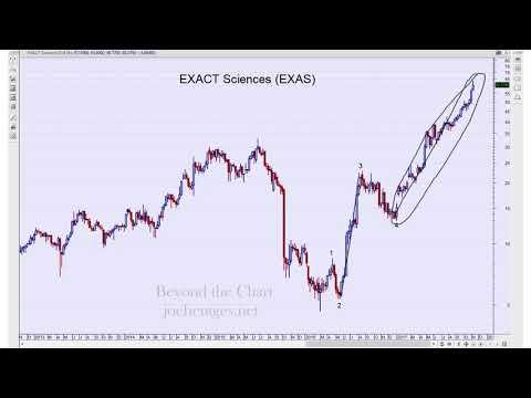 Stock Market Update   Biotech