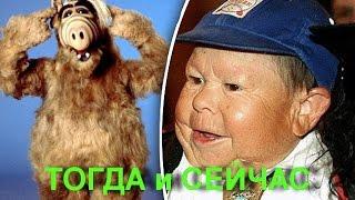 Альф (ALF) . Актёры сериала ТОГДА и СЕЙЧАС
