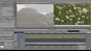 Aprender a editar con Avid Media Composer Capítulo 5. Match frame, bloquear sincronía, mute, solo.