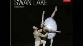 Swan Lake Ballet (Tchaikovsky) -Act I: III. Scene (Allegro Moderato)