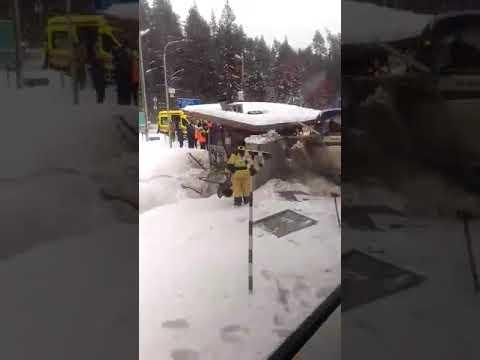 Ласточка протаранила автобус в Ленинградской области