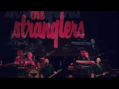 The Stranglers - Wellington, NZ