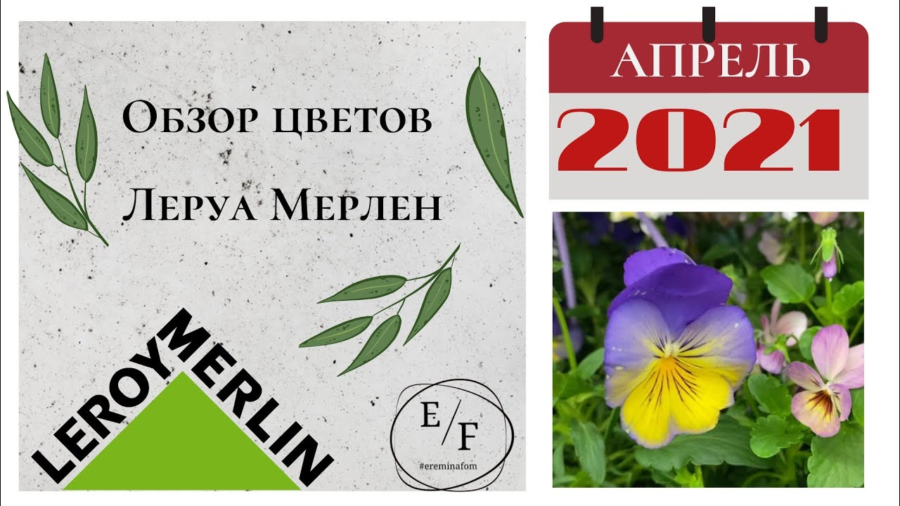 Самый лучший обзор Цветов в Леруа Мерлен Апрель 2021@Светлана Ерёмина!