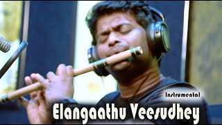 Elangathu Veesuthe | Pithamagan | Ilayaraja song | Flute Cover | Ishaan Dev