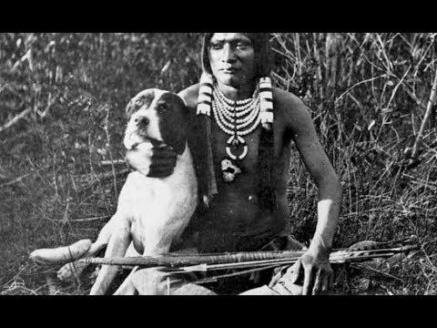 Археологи узнали, когда и для чего древние люди впервые приручили собак
