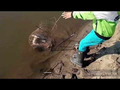 ⚡Не хилая рыбалка в центре города. Река Казанка открыла весной свой скрытый потенцивал😂
