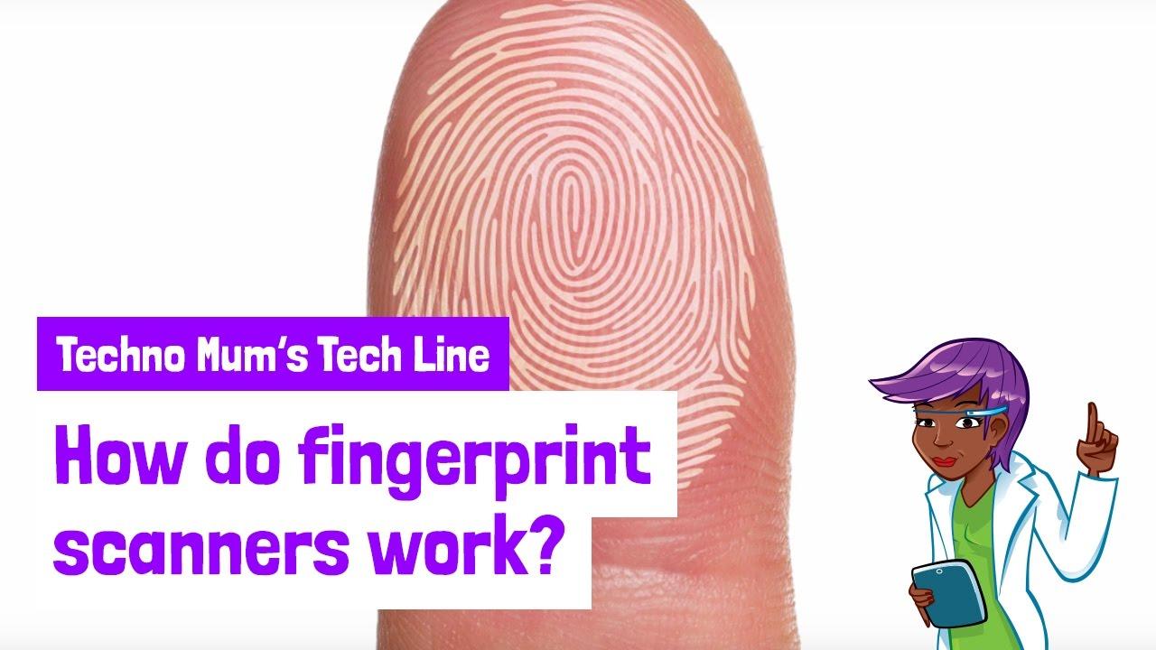 How do fingerprint scanners work?