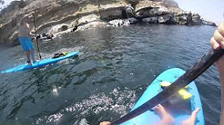 La Jolla Shores to La Jolla Cove on a Paddleboard