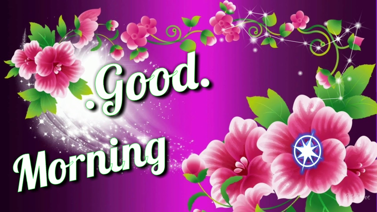 Good Morning Video Beautiful Whatsapp Status Greetings Wishes Quotes Massage Happy Monday Youtube