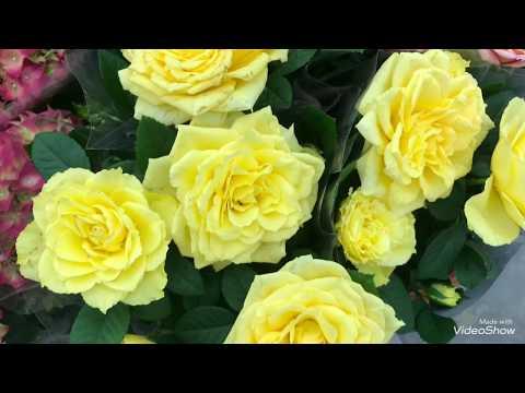 Цветы к 1 Cентября в Ашане.