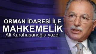 Ali Karahasanoğlu : Davacı: Orman İdaresi Davalı: Ekmel Abi!