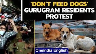 Gurugram family held hostage for feeding dogs: What really happened? | Oneindia News