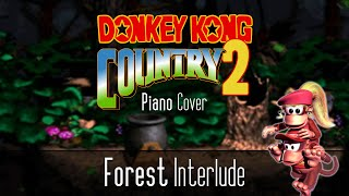 Donkey Kong Country 2 - Forest Interlude Piano Cover