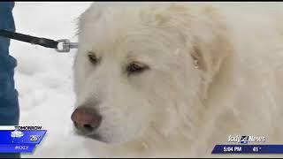 Snowy start to Saturday in Spokane